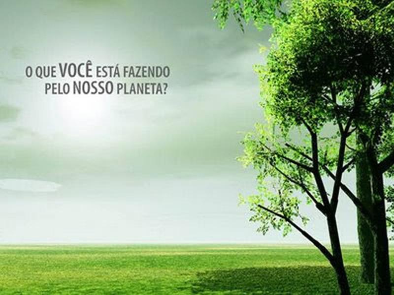 Preferência O Dia Mundial do Meio Ambiente é comemorado anualmente em 5 de  VI83